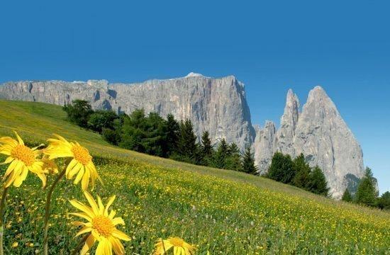 vacanza-sul-maso-siusi-a-sciliar-castelrotto-(3)