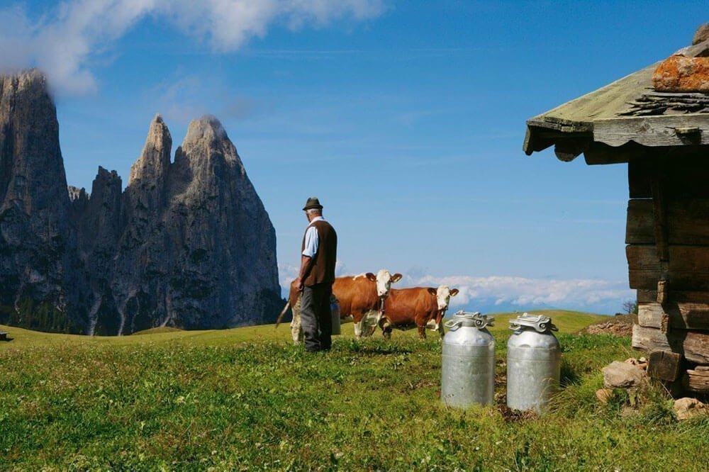 Wanderurlaub Dolomiten – Wandern auf der Seiser Alm